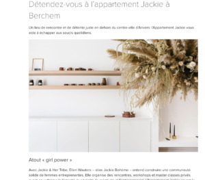 preview of article vtdéco appartement jackie